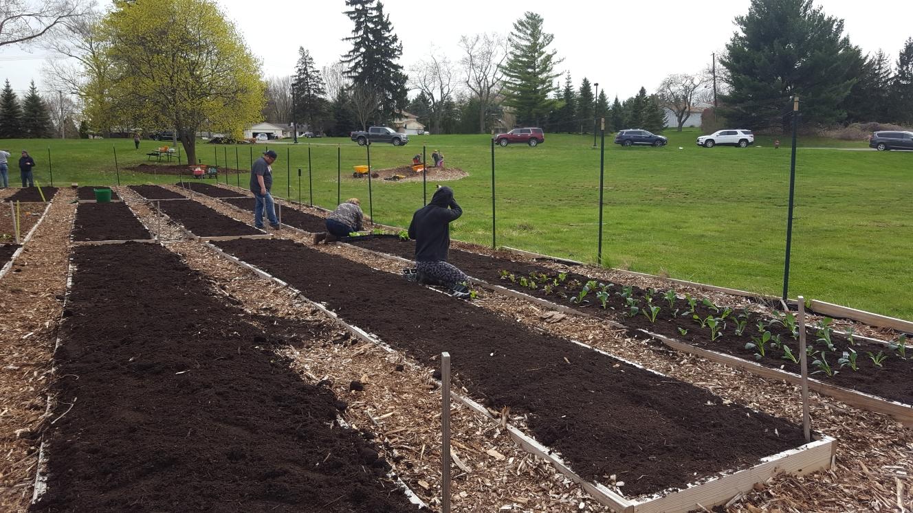 Planting Day 2020